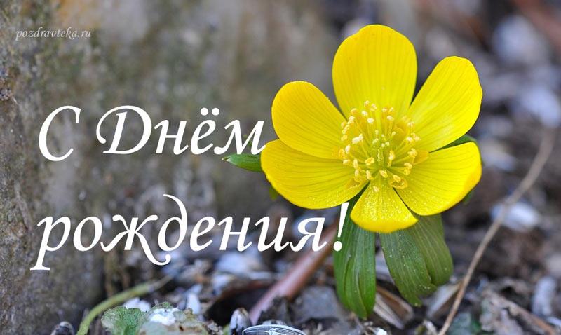 Изображение - Короткие поздравления с днем рождения мужчине в прозе своими словами 46-korotkie-v-proze