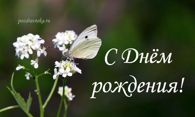 Изображение - Поздравления девушки с днем 109-devushke