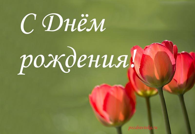 Изображение - Поздравление жене с днем рождения прикольное 349-prikolnye